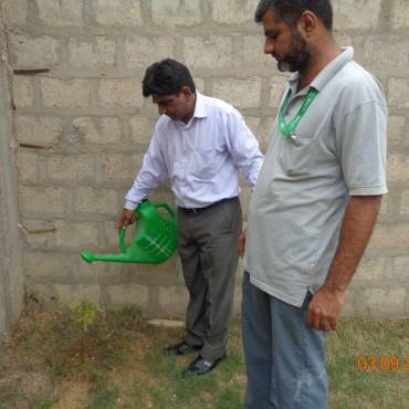 Tree plantation in schools
